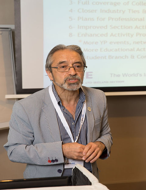 Professor Ali Hassami